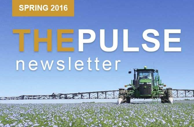 The Pulse – Spring Newsletter