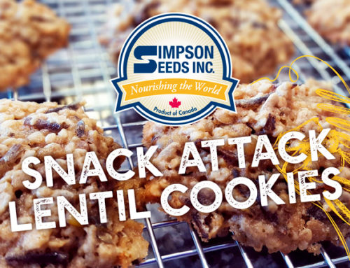 Snack Attack – Lentil Cookies