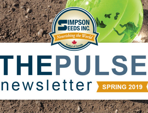 The Pulse – Spring Newsletter