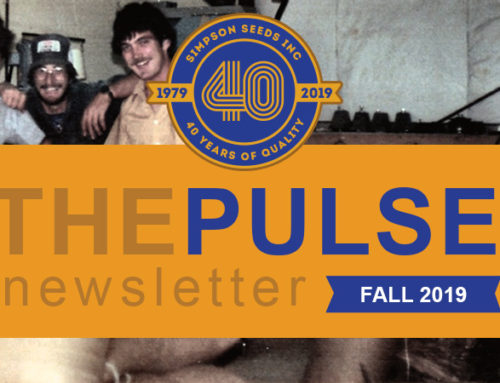 The Pulse – Fall Newsletter