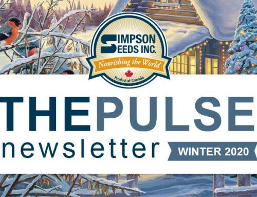 The Pulse – Winter Newsletter