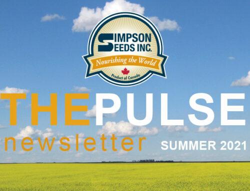 The Pulse – Summer Newsletter